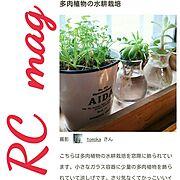 ありがとうございます(●′艸'●) ~♡/掲載して頂きました☆/窓際のグリーン特集…などのインテリア実例