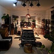 アジアンリゾート風に憧れる/ミックスインテリア/グリーンのある暮らし/観葉植物…などのインテリア実例
