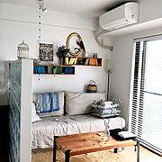 IKEA/フランフラン/ユーカリドライ/ガラスブロック/エリンジウム/ペイント壁…などのインテリア実例