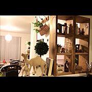 YUT@クン/DIY/フェイクグリーン/PUEBCO/Kitchen…などのインテリア実例
