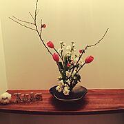 生け花/チューリップ/クリスマス/造作棚/木瓜の花/和…などのインテリア実例