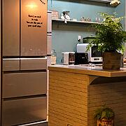 くらしのeショップモニター/山善/キッチン壁 塗りました/キッチン棚DIY/食器棚 撤去…などのインテリア実例