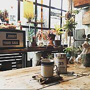 スクエアボックス/ダイソー/フロック/おもちゃ収納/ジャストフィット‼/My Shelf…などに関連する他の写真