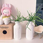 IKEA/男前インテリア目指して/DIY/足場板古材/イームズ チェア/Lounge…などに関連する他の写真