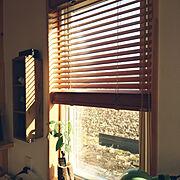 On Walls/IKEA/ストーンプレート/ベニヤ板/ディアウォール/フェイクグリーン…などに関連する他の写真