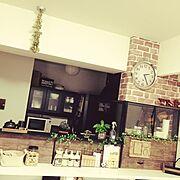 男前/観葉植物/セリア/DIY/Kitchen…などのインテリア実例