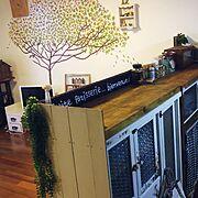 収納/食器棚/カフェ/キッチンカウンター/DIY/賃貸…などのインテリア実例