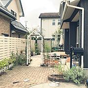 庭/ウッドデッキのインテリア実例写真