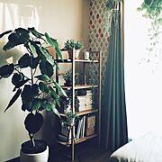 レンガ柄リメイクシート/クッション/ウォールステッカー/キャンドゥ/賃貸アパート…などに関連する他の写真