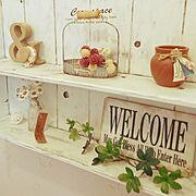 フェイクグリーン/ドライフラワー/飾り棚DIY/トイレ/わんこと暮らす家/中古一戸建て…などのインテリア実例