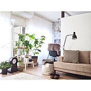 IKEA/緑がある生活/マンション暮らし/築35年以上/光の入る部屋/緑のある暮らし…などのインテリア実例