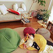 パキラ/ゴムの木/IKEA/IDEEプーフ/ACTUSソファー/観葉植物…などのインテリア実例