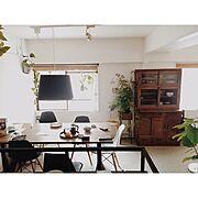 IKEA/照明/観葉植物/グリーンのある暮らし/古家具/マンション…などのインテリア実例