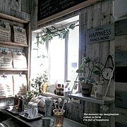 ニトリ/クッション/karimoku/カリモク/ソファー/コーヒーテーブル…などに関連する他の写真