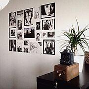 白黒写真/マスキングテープリメイク/モノトーン/コーヒーミル/植物/On Walls…などのインテリア実例