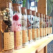 WOODPRO/ドライフラワー/寝室の壁/見せる収納/アクセサリー収納コーナー/東京ロハスフェスタ…などに関連する他の写真