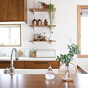 Kitchen/伝産協会・モニター/漆喰壁/ウッドワン スイージー/伝統的工芸品…などのインテリア実例