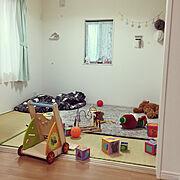 りんちゃん/ペット周り 笑/ベッド周りではありません/Bedroom/全部で5匹いる…などに関連する他の写真