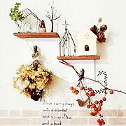 植物のある暮らし/ドライフラワー/写真コラージュ/観葉植物のある暮らし/Lounge…などに関連する他の写真