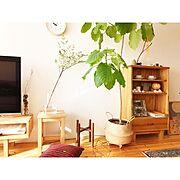 赤ちゃんのいる部屋/今年もよろしくお願いします♪( ´▽`)/かべがみや本舗…などに関連する他の写真