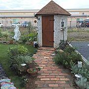 観葉植物/植物/DIY/物置小屋DIY/手作り/手作りの庭…などのインテリア実例
