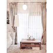 Bathroom/くも/パンチカーペット/トイレットペーパー収納/グレー…などに関連する他の写真
