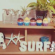 西海岸インテリアに憧れて♡/リトルタイクストドルトッツ/スヌーピー/My Shelf…などのインテリア実例