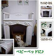 使い回し/孫/DIY/ワンコ部U^ェ^U/犬部♪/くるり…などのインテリア実例