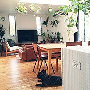 アンティーク/男前/観葉植物/暖房/Overviewに関連する他の写真