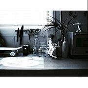 ホルムガードスカーラ/BALMUDA/Xperia Touch/植物のある暮らし/リノベーション…などのインテリア実例