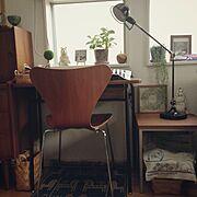 北欧雑貨/北欧/デザイナーズ/アルネ・ヤコブセン/セブンチェア/Lounge…などのインテリア実例