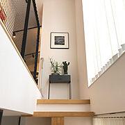 ミルクブッシュ/ウチワサボテン/スケルトン階段/こどものいる暮らし/グリーンのある暮らし…などのインテリア実例