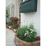 サークル花壇のインテリア実例写真