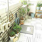 ドウダンツツジ/小鳥さん/journal standard Furniture/日光浴日和…などに関連する他の写真