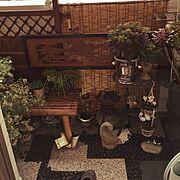 ダイソースノコ/ミニ灯篭/ステイン塗装/黒玉砂利/和風ガーデン/坪庭ガーデン…などのインテリア実例