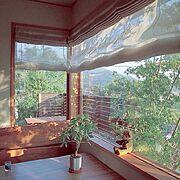 オーダーカーテン/カーテン/FIX窓/ダイニングテーブル/ベンチチェア/ダブルシェードカーテン…などのインテリア実例
