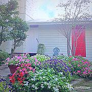 物置小屋/物置小屋ペンキ塗り/植栽/外観/物置小屋DIY/花壇の花…などのインテリア実例