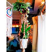 オイル缶リメイク/花台DIY/寄せ植え/ガーデニング/ガーデンフェンス/花壇…などに関連する他の写真