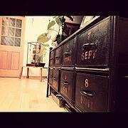 ドロワーチェスト/テレビ台/破魔弓/ウンベラータ/My Shelf…などのインテリア実例