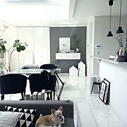 大人ファンタジー/ラダーシェルフDIY/ラダー/愛犬と暮らす家/愛犬…などに関連する他の写真