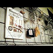 エアプランツ/ボーイズライク/渋色/RoomClipStyle/RoomClip Style/On Walls…などのインテリア実例
