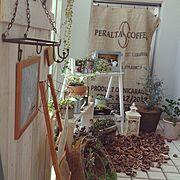 くるカラ/ベランダガーデン/コーヒー袋/雑貨/ベランダ/ランタン…などのインテリア実例
