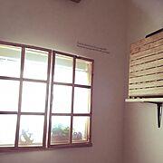 マンションインテリア/ウニコ 雑貨/nico and.../植物/新婚…などに関連する他の写真