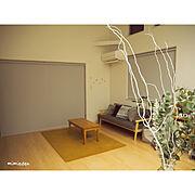 植物のある暮らし/観葉植物/フィカスベンガレンシス/FURROWED-LEATHER/truckfurniture…などに関連する他の写真
