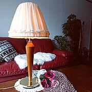 ひとり暮らし/本棚/モロッコラグ/キリム/観葉植物/狭い部屋…などに関連する他の写真