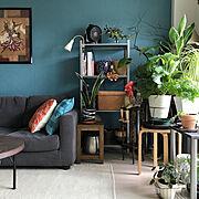 花台DIY/花のある暮らし/BRIWAX/ヘイヘイホー部/皆さんのお陰で励みになってます♡/ガーデンピックDIY…などに関連する他の写真