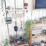 セリア/ベランダガーデン/端材リメイク/いなざうるす屋さん/フェイクグリーン/板壁DIY…などのインテリア実例