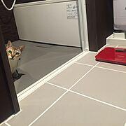 猫/一人暮らし/ホテルライク/Bathroom…などのインテリア実例