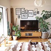 北欧/niko and… /モンステラ/観葉植物/コンポニビリ/ポスター…などに関連する他の写真