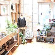 キャベツボックス/観葉植物/男前/グリーン/フェイクグリーン/みどりの雑貨屋…などのインテリア実例